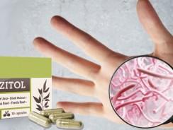 Parazitol – farmacie, compoziție, recenzii, unde să cumpărați, forum